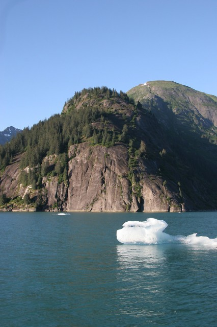 Tracy Arm Cliffs with Icebergs; photo by Fred Cooper